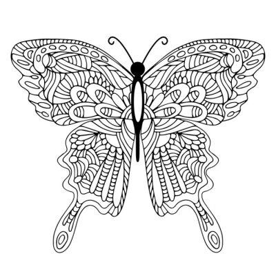 Bild Hand gezeichnet doodle Schmetterling