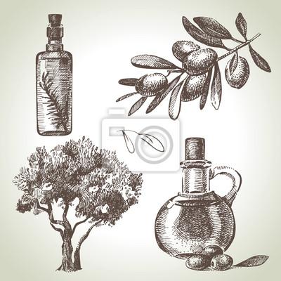 Hand gezeichnet olive set