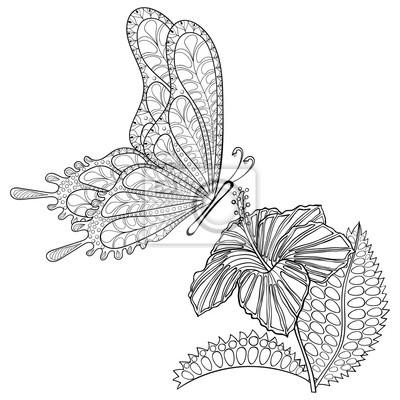 Hand gezeichnet zentangle tribal fliegen schmetterling und hibiskus ...
