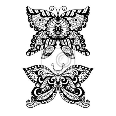 Ausgezeichnet Bild Eines Zu Färbenden Schmetterlinges Fotos ...