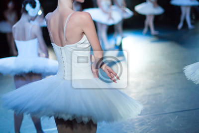 Handelnde Fähigkeiten, dramatischer Charakter, Theaterkonzept. Schmaler Rücken der jungen Ballett-Tänzerin, gekleidet in schneebedeckten weißen Kleid mit Ballettröckchen, mit ihren Kollegen auf der Bü