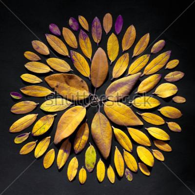 Bild Handgemachte Blattmandalaflache Laie auf schwarzem Hintergrund. Böhmische Mandala-Anordnung aus Blättern.