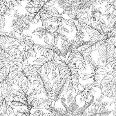 Fototapete Tropischen Exotischen Blumen Und