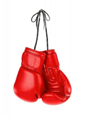 Bild Hanging boxing gloves