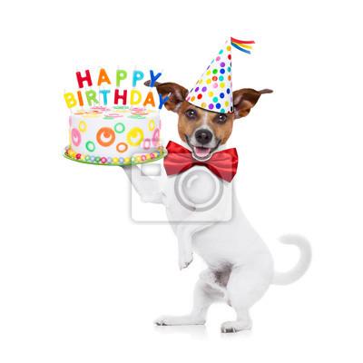 Happy Birthday Dog Leinwandbilder O Bilder Platzhalter Witzig