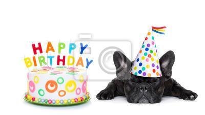 Bild Happy Birthday Sleeping Dog