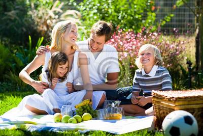 Happy Family spielen zusammen in einem Picknick
