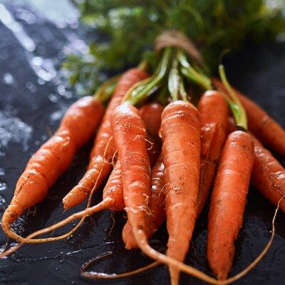 Bild Haufen von frisch gepflückten Karotten close up