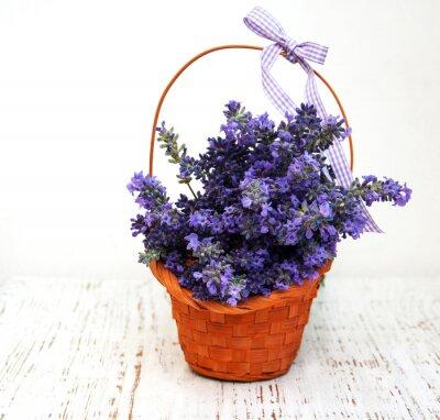 Bild Haufen von Lavendel