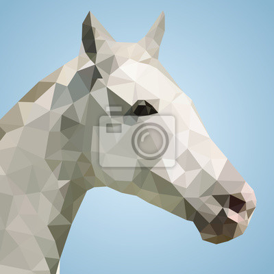 Head of a white horse in triangular style