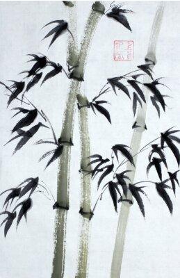 Bild Helle Bambusbäume