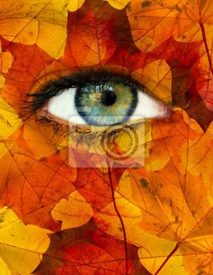 Herbst Auge