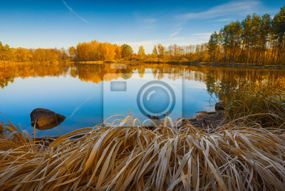 Herbst bunte Wald auf dem See