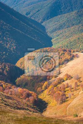 Herbst Karpaten-Tal