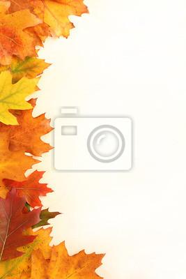 Herbstblattfeld