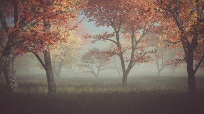 Bild Herbstwald im Nebel.