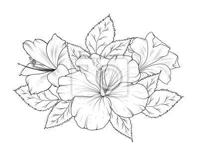 Hibiskus und lilie blumen bouquet girlande zusammensetzung. isoliert ...