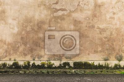 Hintergrund Feuchte Wand Mit Flecken Und Algen Und Boden Mit