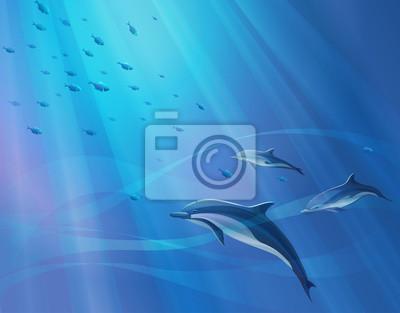 Bild Hintergrund mit Delphinen