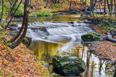 Bild Hirsch Lick Creek Wasserfall