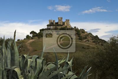 Bild historischen Schloss von Almodovar del Rio