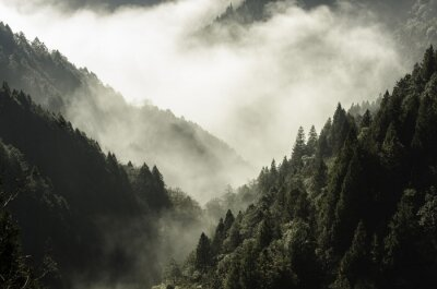 Bild Hohe Berg in Nebel und Wolke