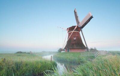Bild Holländische Windmühle im Morgenlicht