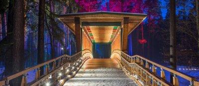 Bild Holzbrücke im Waldpark. Nacht mehrfarbige Lichter.