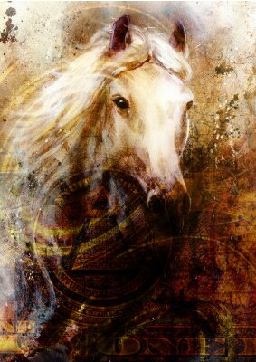Bild Horse heads, abstract ocre background, with one dollar collage.