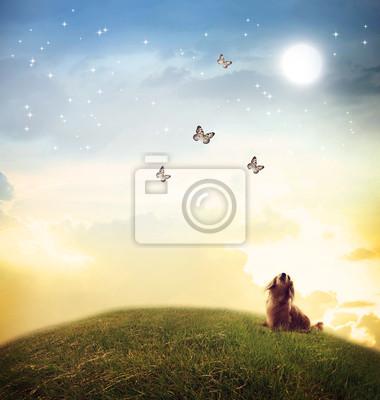 Hund, der Schmetterlinge unter dem Mondlicht