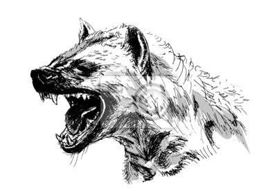 Hyäne - Vektor-Illustration