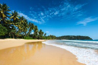 Bild Idyllischen Strand. Sri Lanka