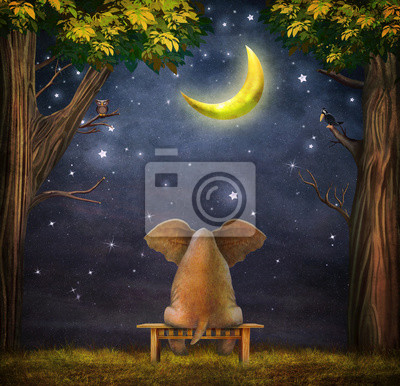 Illustration eines Elefanten auf einer Bank in der Nacht Wald