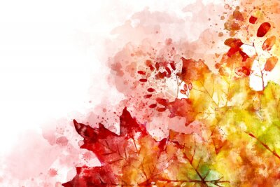 Bild Illustration of fall image. Autumn background with yellow and red maple leaves. Digital watercolor painting.