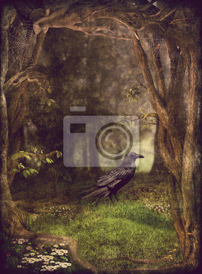 Illustrator zeigen Raben in den dunklen Wald