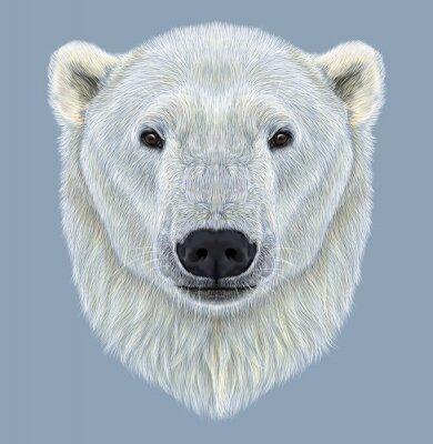 Bild Illustrierte Porträt von Eisbären