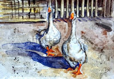 Bild Inländische Gänse gehen in den Hof. Aquarell auf Papier zeichnen. Naive Art. Abstrakte Kunst. Aquarell auf Papier malen.
