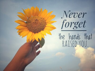 Bild Inspirational motivational quote - Never forget the hands that raised you. With background of blue sky and beautiful sunflower blossom in hand. Photo concept with nature.