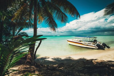 Island Saona. Palm trees and speed boat on the tropical beach, Dominican Republic