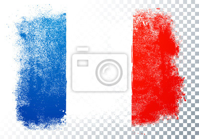 Bild Isolated France flag vector icon in brushstroke texture on transparent background