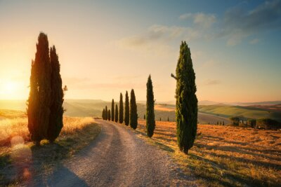 Bild italy tuscany countryside rolling hills; summer farmland and country road;