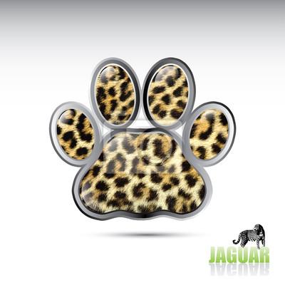 Jaguar Leopard Pfote Taste