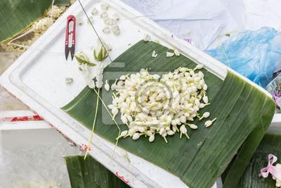 Jasmin für die Herstellung Girlande auf Bananenblatt