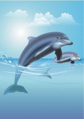 Bild Jumping Dolphins Illustration