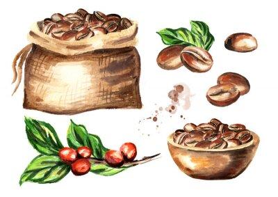 Bild Kaffeebohnen eingestellt. Gezeichnete Illustration des Aquarells Hand lokalisiert auf weißem Hintergrund