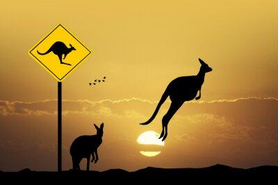 Bild Kangaroo Schild Vorsicht