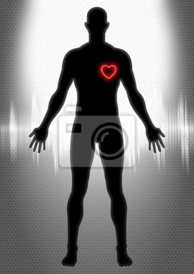 Kardiologie