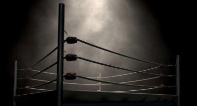 Bild Klassische Weinlese-Boxring