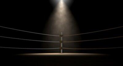 Bild Klassische Weinlese-Boxring Corner