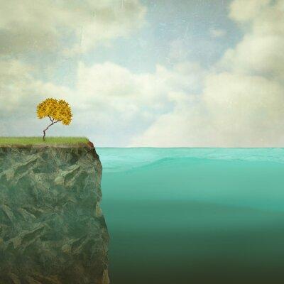 Bild Kleiner Baum thront